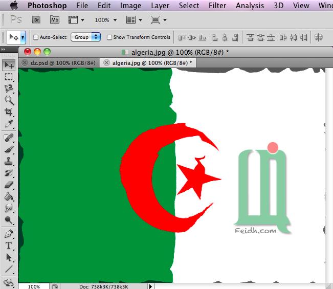 صمم علم بلدك بتأثير جميل بالفوتوشوب  13103052215