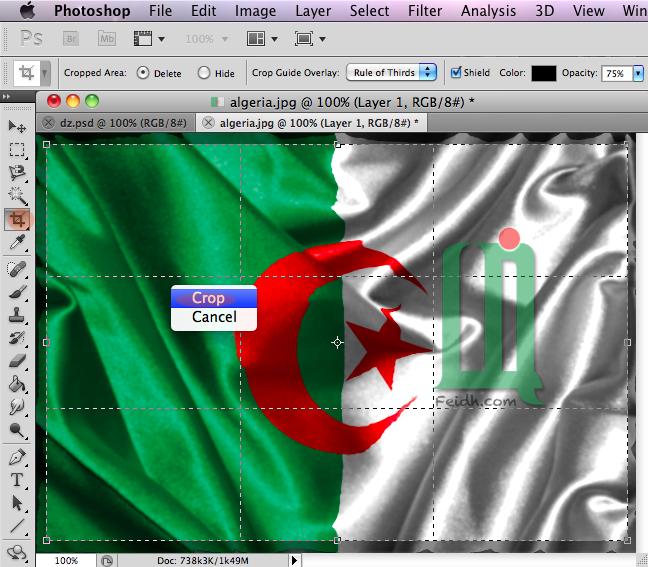 صمم علم بلدك بتأثير جميل بالفوتوشوب  13103054334