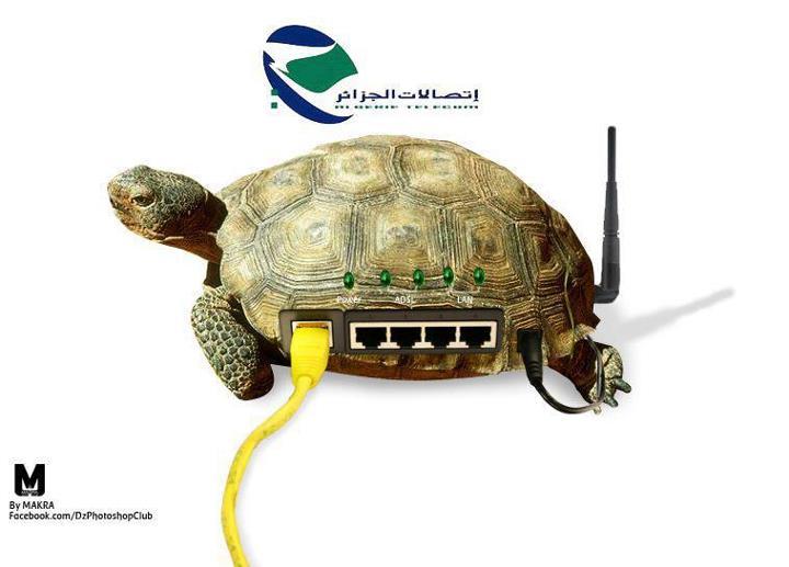 اتصالات الجزائر'''''''' 13435361911.jpg